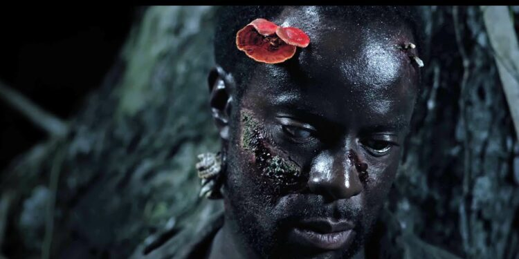 A still from the South African horror film Gaia