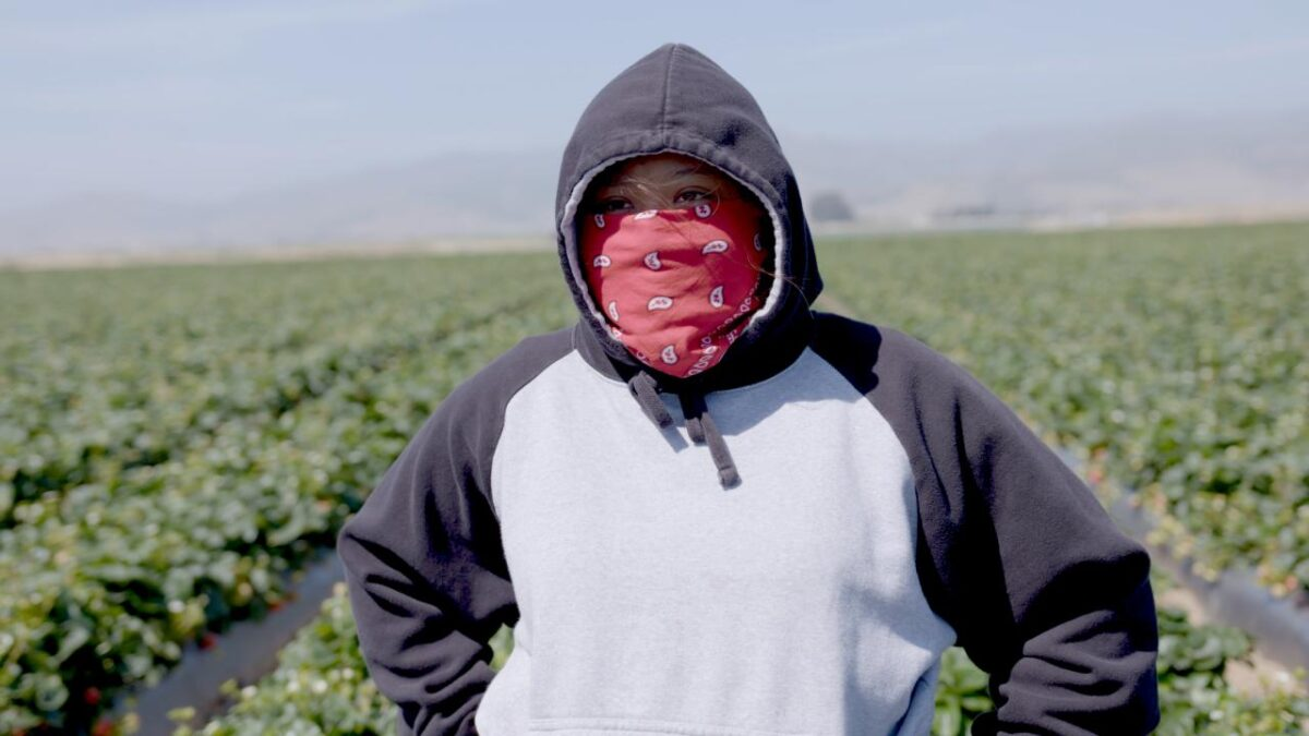 REVIEW: Fruits of Labor (2021)